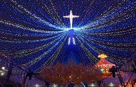 台中燈會搶先看 基督教燈區打造璀璨幸福城